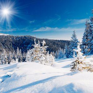 Корпоративные бизнес тренинги зимой
